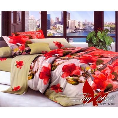 3D постельное белье поликоттон двухспальное TAG XHY2167