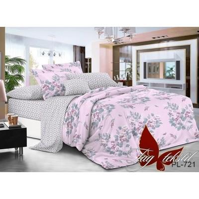 Комплект постельного белья поплин двойной TAG PL-721