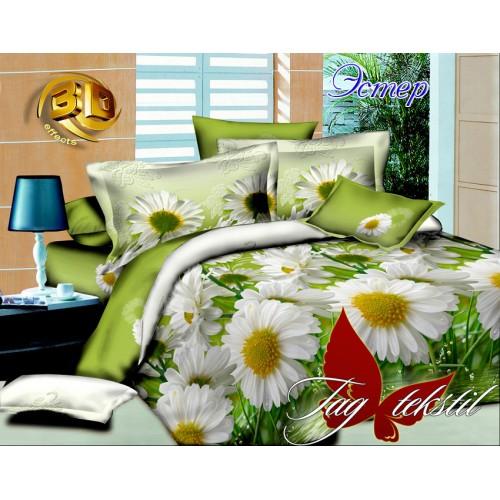 Комплект постельный полуторный ранфорс TAG R509