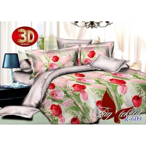 Комплект постельный полуторный ранфорс TAG R609